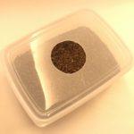 【産卵床の作り方】ヒョウモントカゲモドキ(レオパ)の産卵床を作ってみた!